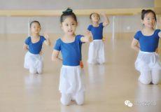 中国舞/芭蕾基础